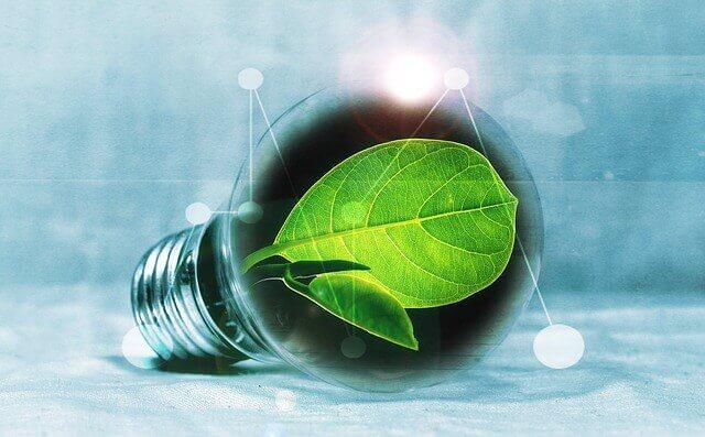 Gewerbestrom Öko Optionen werden für Unternehmen zunehmend relevant